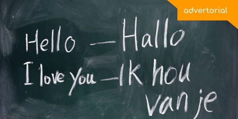 Nederlandse taal en cultuuronderwijs Language One